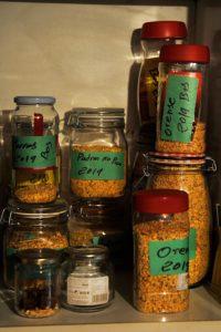Imaxe de sementes